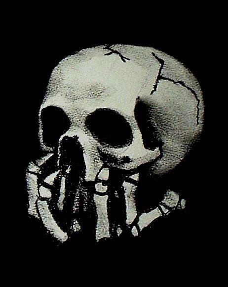 Skull on Black by alisonbelinda