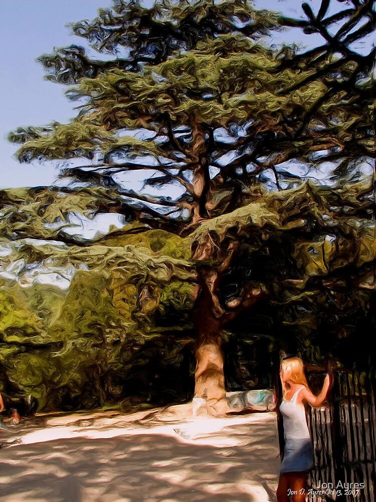 Garden of Alupka Palace by Jon Ayres