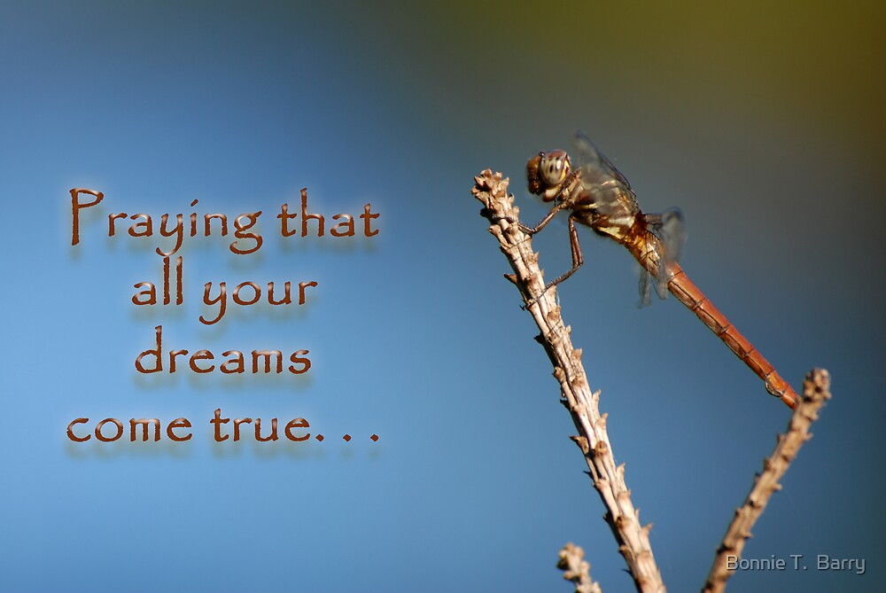 Praying that all your dreams come true . . . by Bonnie T.  Barry