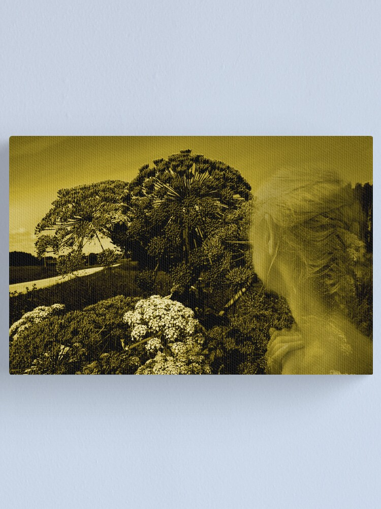 Alternate view of I see this way.... Canvas Print