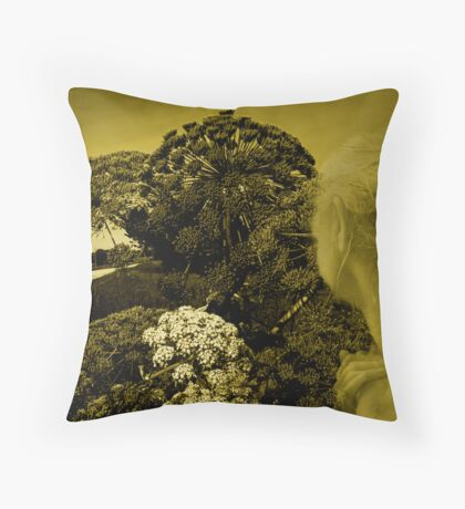 I see this way.... Throw Pillow