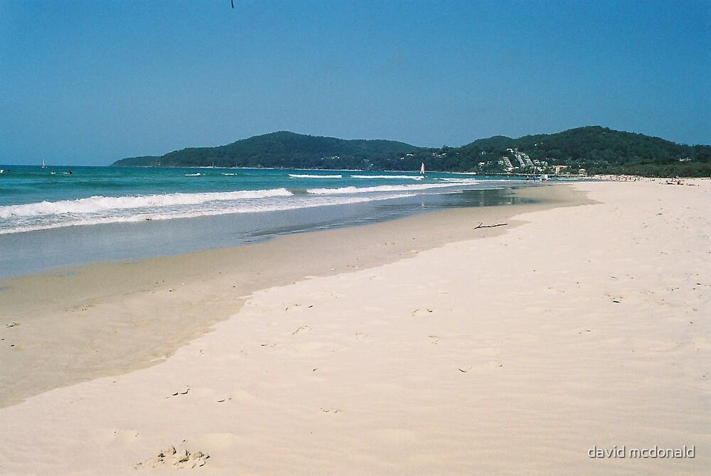 noosa beach by david mcdonald