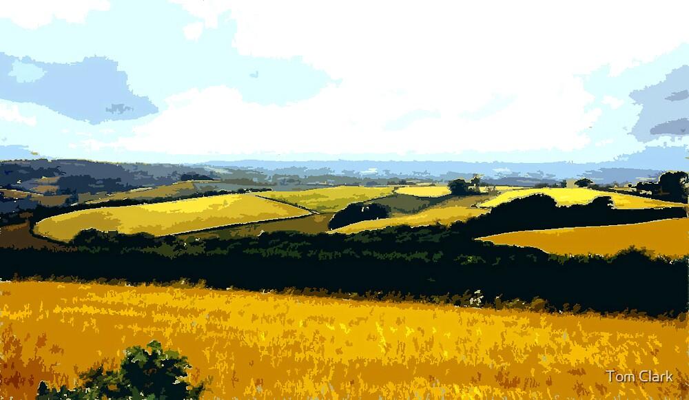 Derbyshire Fields by Tom Clark