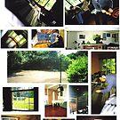 Working Studio by Nick Woodbridge