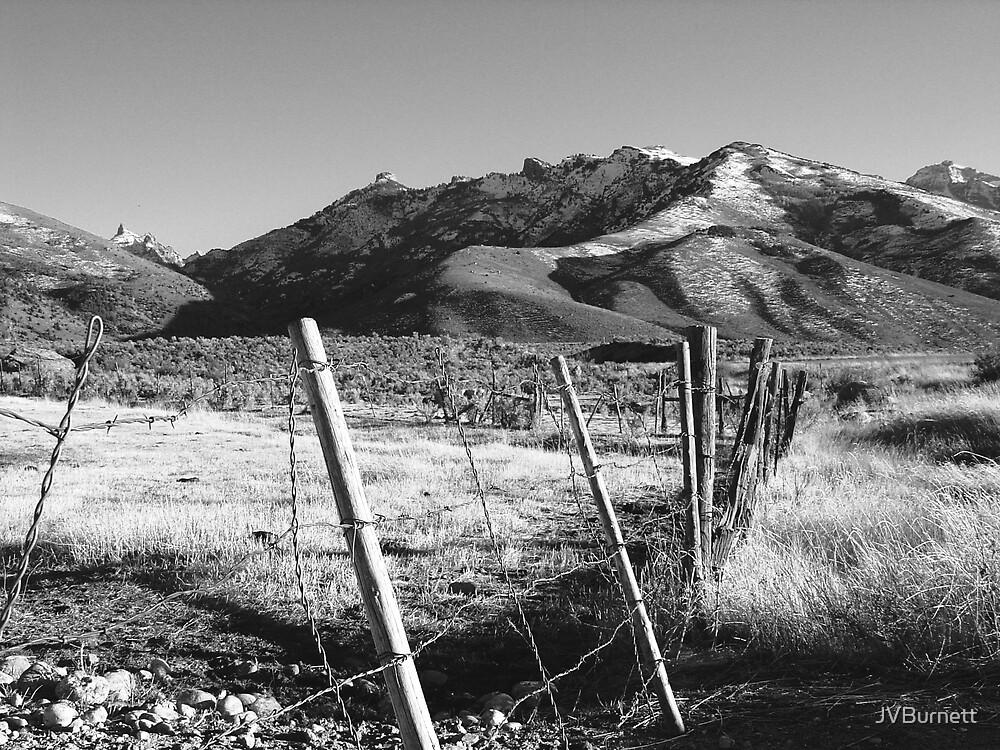 Scout's Fence IV by JVBurnett
