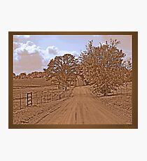 """Don't fence me in"" Photographic Print"