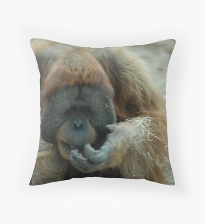 """Let me see..."" Throw Pillow"
