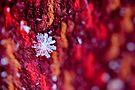 Snowflake & Scarf XV by Kathleen Daley