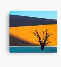 Deadvlei, Namibia Canvas Print
