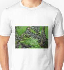 Dew drops! T-Shirt