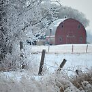 Red Barn by Roxanne Persson