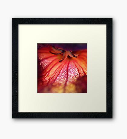 Florotica III Framed Print