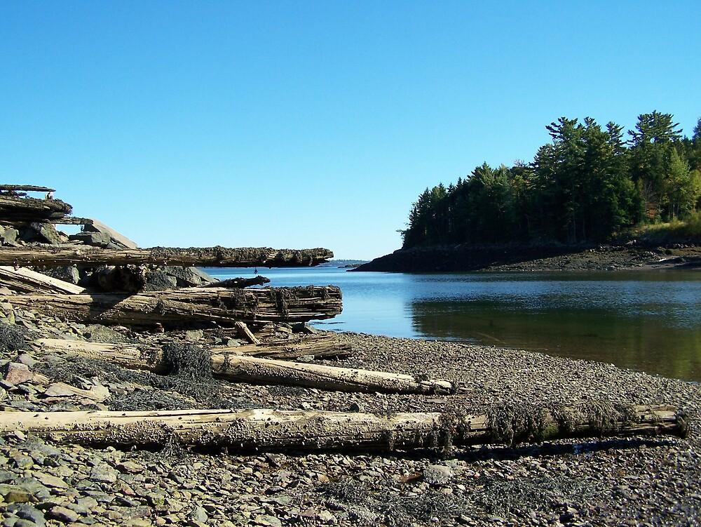Coastal Walk by Gene Cyr