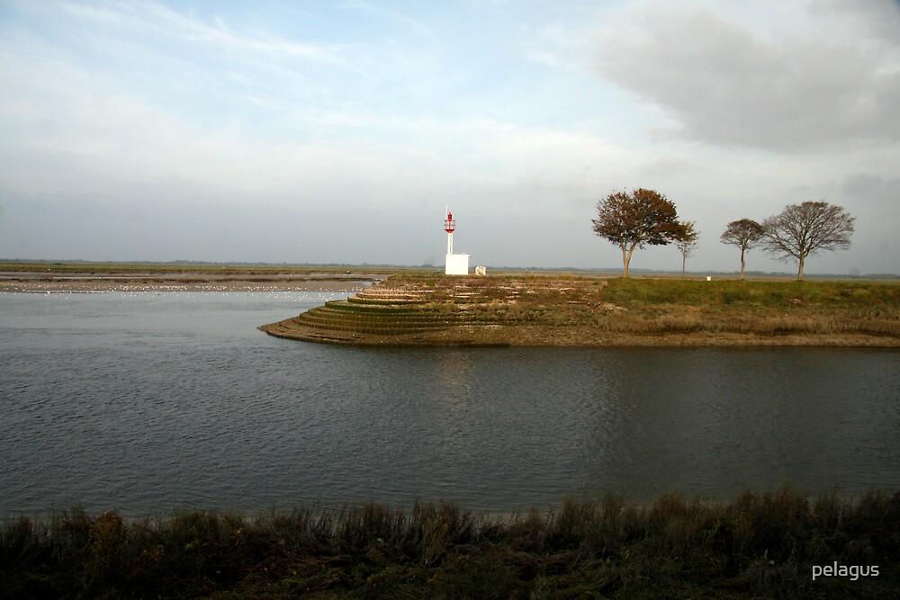 the lighthouse by pelagus