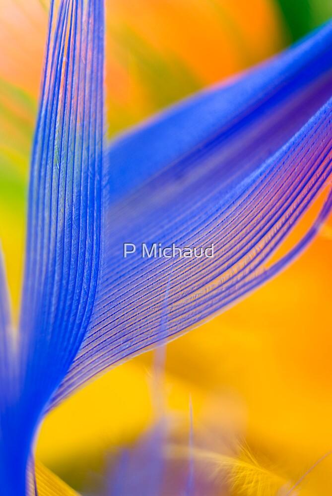 Blue by P Michaud