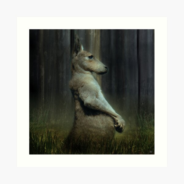 Portrait of a Kangaroo Art Print