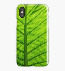 Green ecological concept, green leaf close-up iPhone Case/Skin