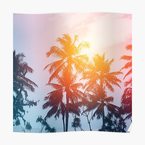Beach sunset at the coast line Poster
