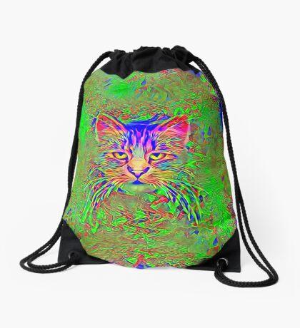 Polar aurora cat Drawstring Bag
