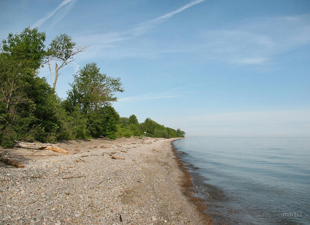 Along the Lakeshore by marts1