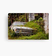 Car crash Canvas Print