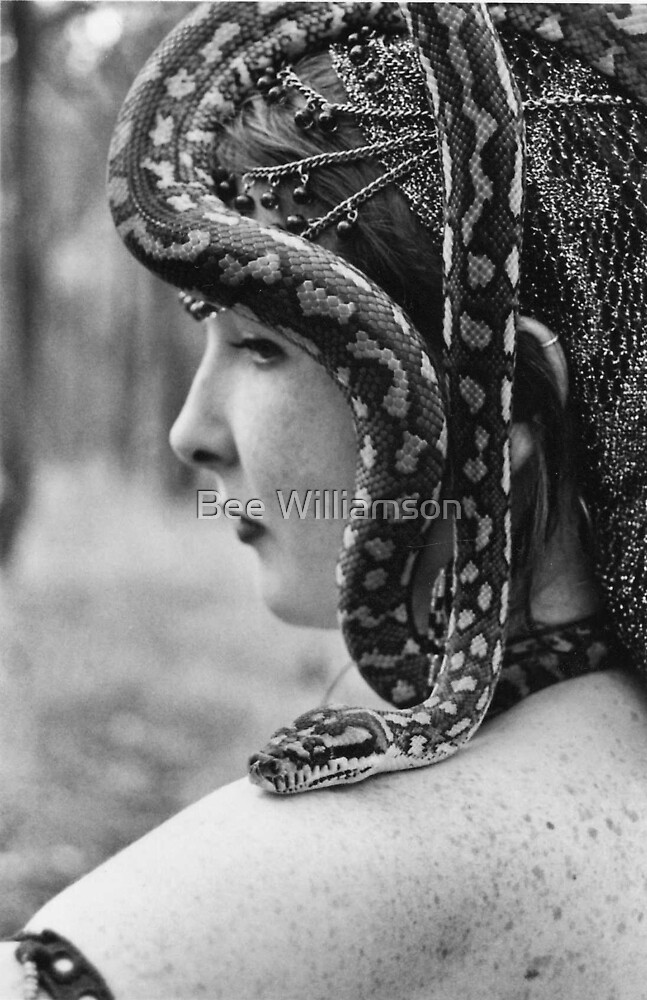 Bellydance 3 Snake by Bee Williamson