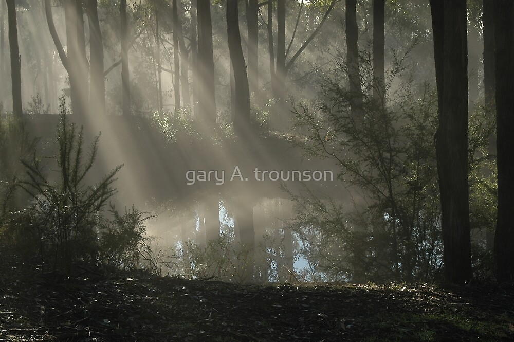 Early Morn by gary A. trounson