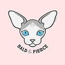 Sphinx Cat - Bald and Fierce  by zoel