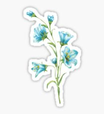 spring blue flowers. watercolor Sticker