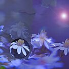 daisy haze by budrfli