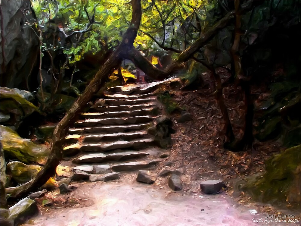 The steps leading to Alupka  Palace by Jon Ayres