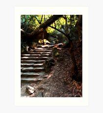 The steps leading to Alupka  Palace Art Print