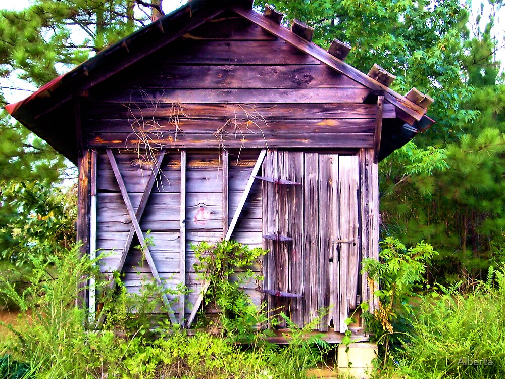 Old Cotton Bin Shed by Alberta