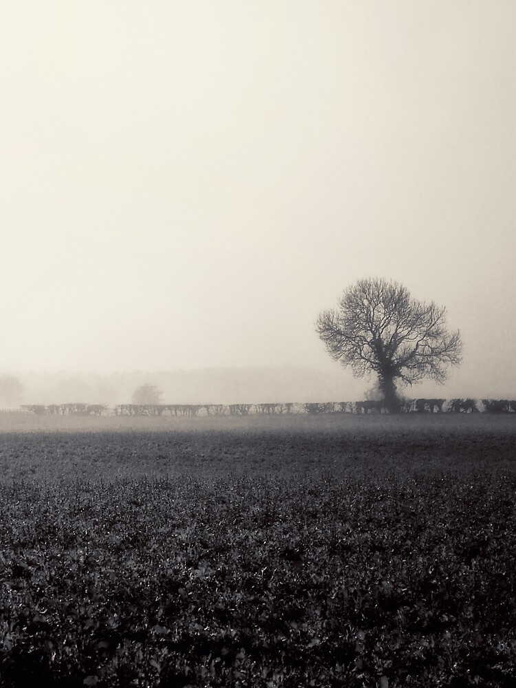 Ghosts in the Landscape by InspiraImage