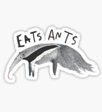 What does an anteater do? Sticker