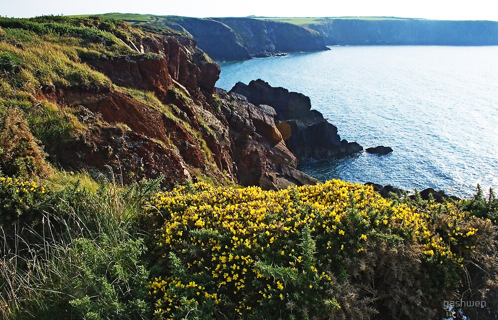 pembrokeshire national coast trail by gashwen
