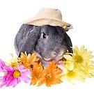Country Gardener Rabbit by idapix