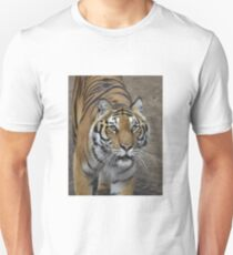 Tiger preparing for the hunt T-Shirt