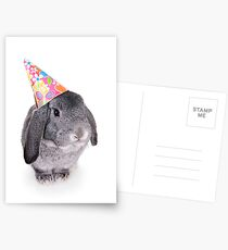 Birthday Rabbit Postcards