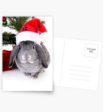 Christmas Rabbit Postcards