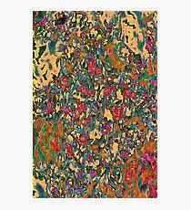 Tapestry In Orange Photographic Print