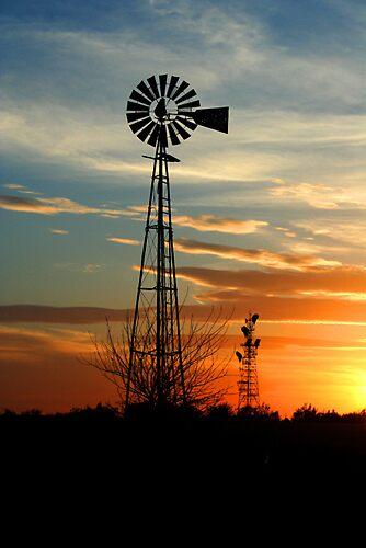 Perfect Sunset by grinandbearit