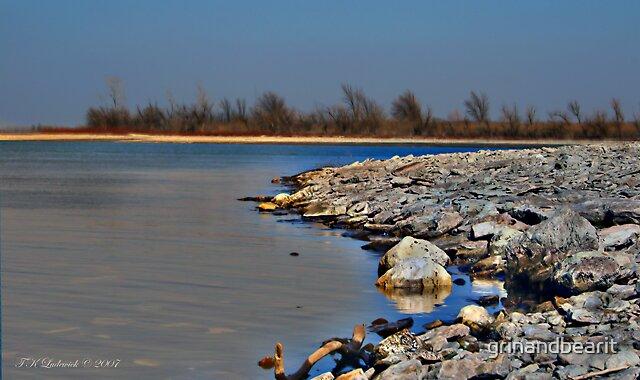 Shoreline by grinandbearit