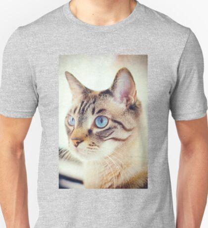 Blue eyed kitty T-Shirt