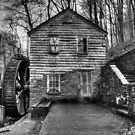 The Rice Gristmill (HDR) B&W by Douglas  Stucky