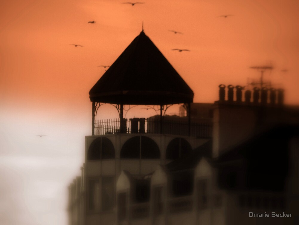 Brighton Sunset by Dmarie Becker