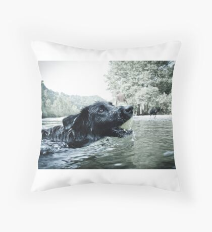 Swimming with my furry friend Throw Pillow