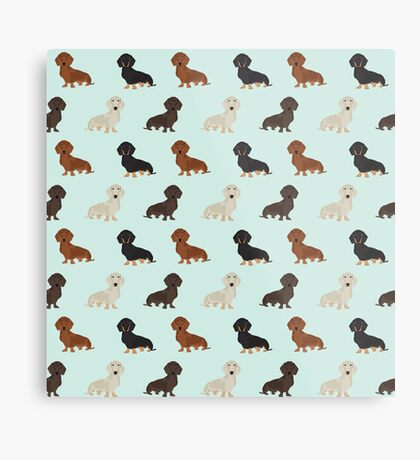 Doxie dachshund dachsie pattern print dog lover dog breed custom dog art by pet friendly by PetFriendly Metal Print
