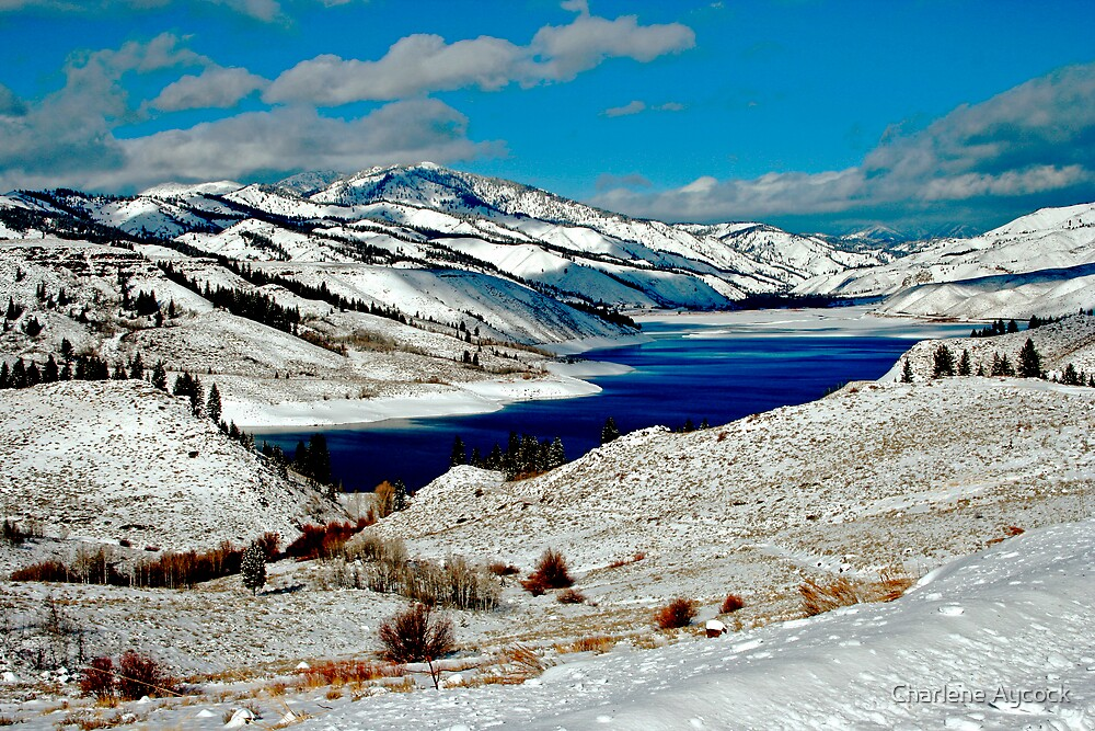 ANDERSON RESERVOIR AFTER FIRST SNOW by Charlene Aycock