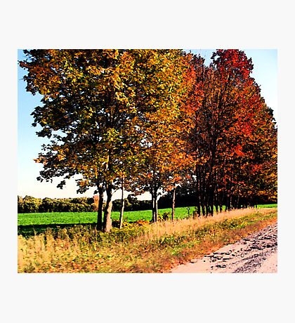 Autumn Splash Photographic Print